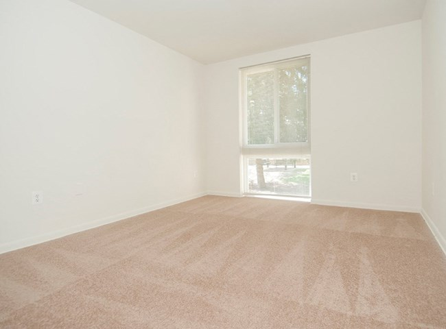 Big Carpeted Room