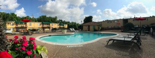 9600 Braes Bayou 1-2 Beds Apartment for Rent Photo Gallery 1