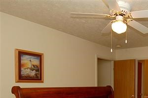 226 Lyness Ave. 1-3 Beds Apartment for Rent Photo Gallery 1