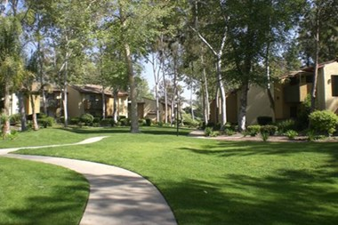 3610 Nogales Studio-2 Beds Apartment for Rent Photo Gallery 1