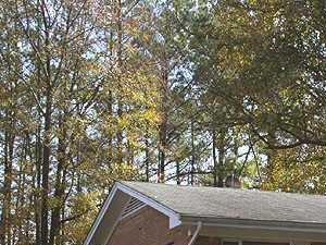 3905 Durham Drive 3 Beds House for Rent Photo Gallery 1