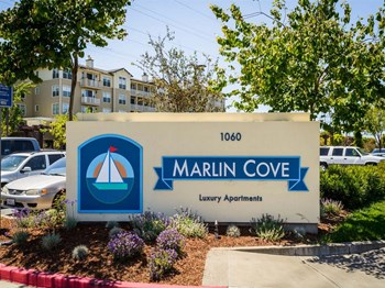 1000 Foster City Blvd 1-2 Beds Apartment for Rent Photo Gallery 1
