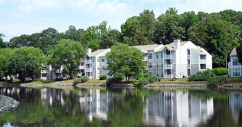 8242 Runaway Bay Drive 1-3 Beds Apartment for Rent Photo Gallery 1