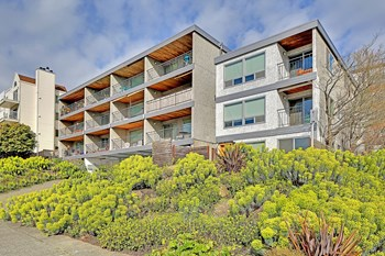 4546 45th Avenue SW 1-2 Beds Apartment for Rent Photo Gallery 1
