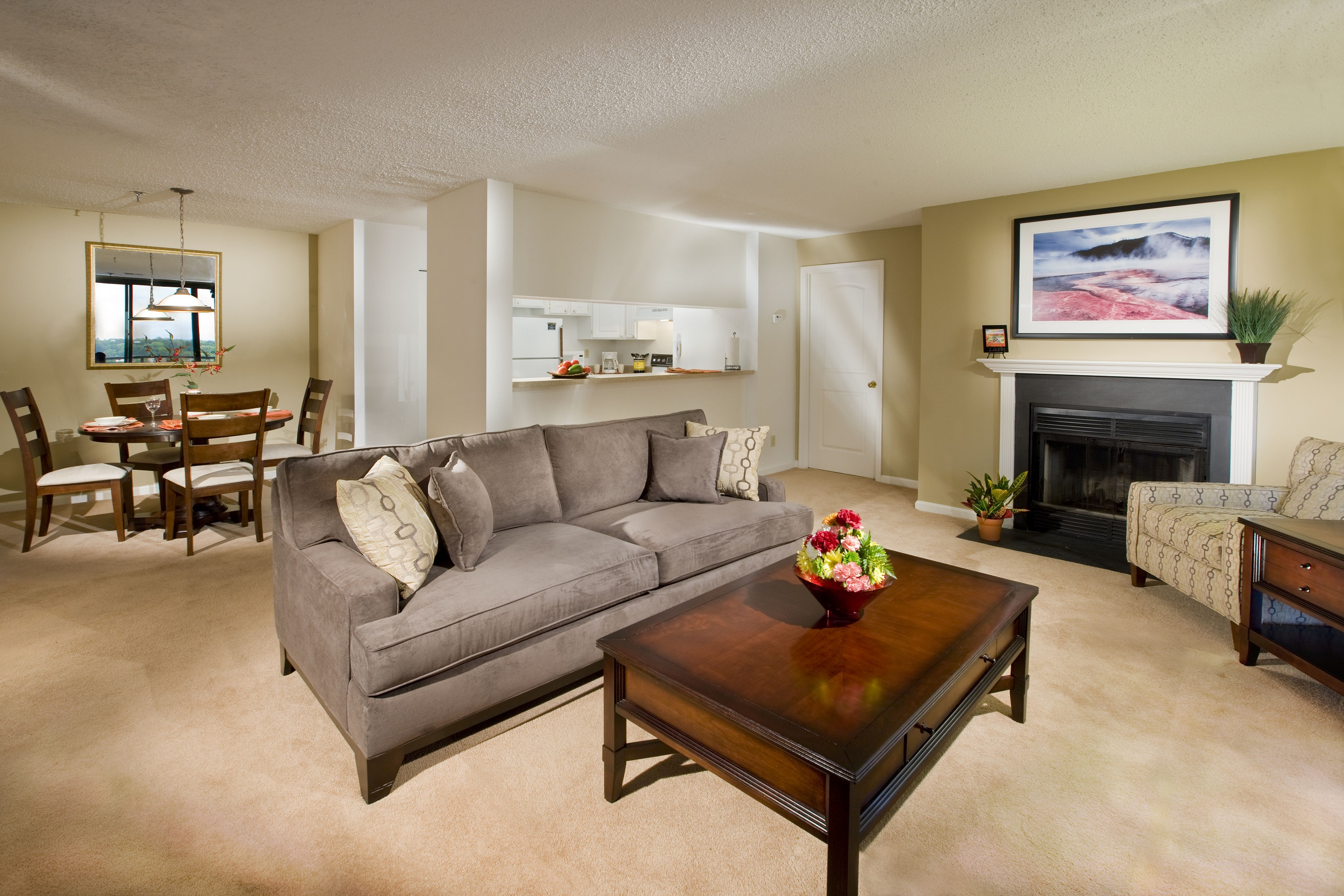 Residences at Rio apartments living room in Gaithersburg, Maryland