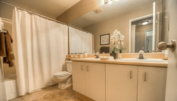 25102 62nd Avenue South 1-3 Beds Apartment for Rent Photo Gallery 1