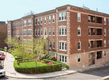 56-58 Selkirk Road 1-2 Beds Apartment for Rent Photo Gallery 1