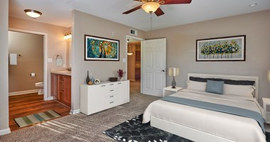 13330 Blanco Road 1-2 Beds Apartment for Rent Photo Gallery 1