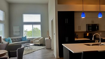 7900 Conser St. 1-2 Beds Apartment for Rent Photo Gallery 1