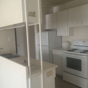 10130 - 152 Street NW 1 Bed Apartment for Rent Photo Gallery 1