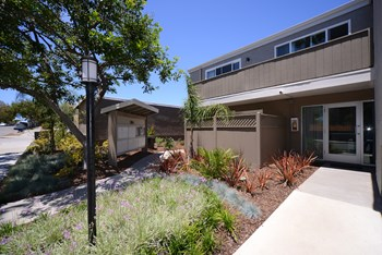 3964 Waring Road Studio-2 Beds Apartment for Rent Photo Gallery 1