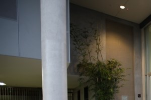 5837 West Sunset Blvd. Studio-2 Beds Apartment for Rent Photo Gallery 1