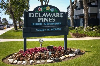 19221 Delaware 1-2 Beds Apartment for Rent Photo Gallery 1
