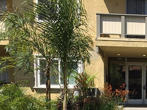 5633-45 Topanga Canyon Blvd. Studio-3 Beds Apartment for Rent Photo Gallery 1