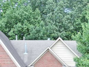 1409 Far Dr Memphis, TN 38016 4 Beds House for Rent Photo Gallery 1