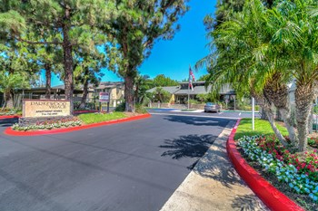 401 W Orangewood Ave 1-2 Beds Apartment for Rent Photo Gallery 1