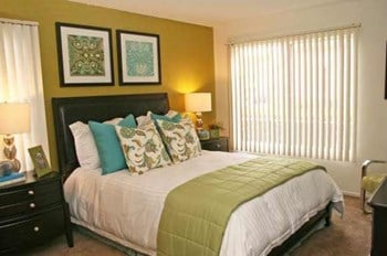 24455 Via Pansa 1-2 Beds Apartment for Rent Photo Gallery 1