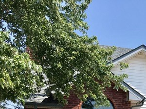 1421 Blaine Ct 4 Beds House for Rent Photo Gallery 1