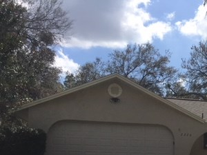 2226 Maple Hill Dr 4 Beds House for Rent Photo Gallery 1