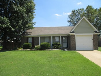 7184 Brandee Dr 3 Beds Apartment for Rent Photo Gallery 1