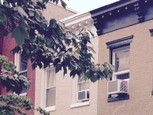1320 8th Street, NW 1 Bed Apartment for Rent Photo Gallery 1