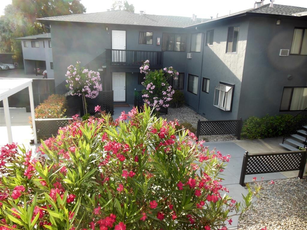 3 Bedroom Apartments for Rent in Mountain View CA RENTCaf