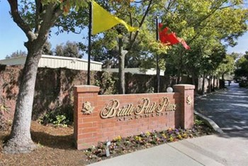 1619 Bridle Path 1-2 Beds Apartment for Rent Photo Gallery 1
