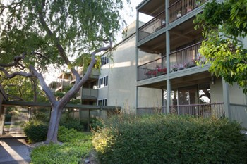 724 Arastradero Road 1-3 Beds Apartment for Rent Photo Gallery 1