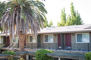 3390 El Camino Real Studio-1 Bed Apartment for Rent Photo Gallery 1