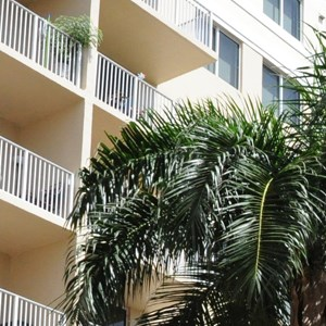 Royal Palms Apartments Photo Gallery 13